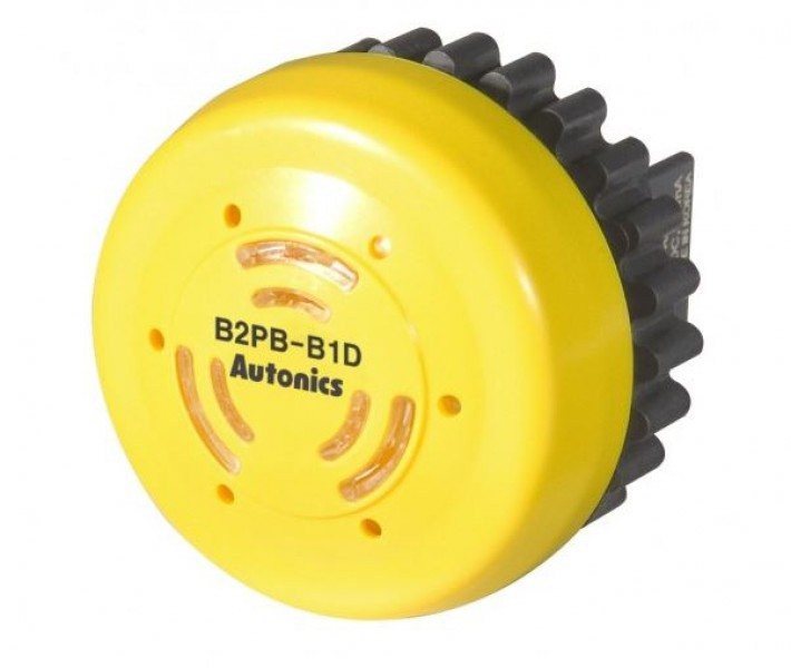 B2PB-B1D